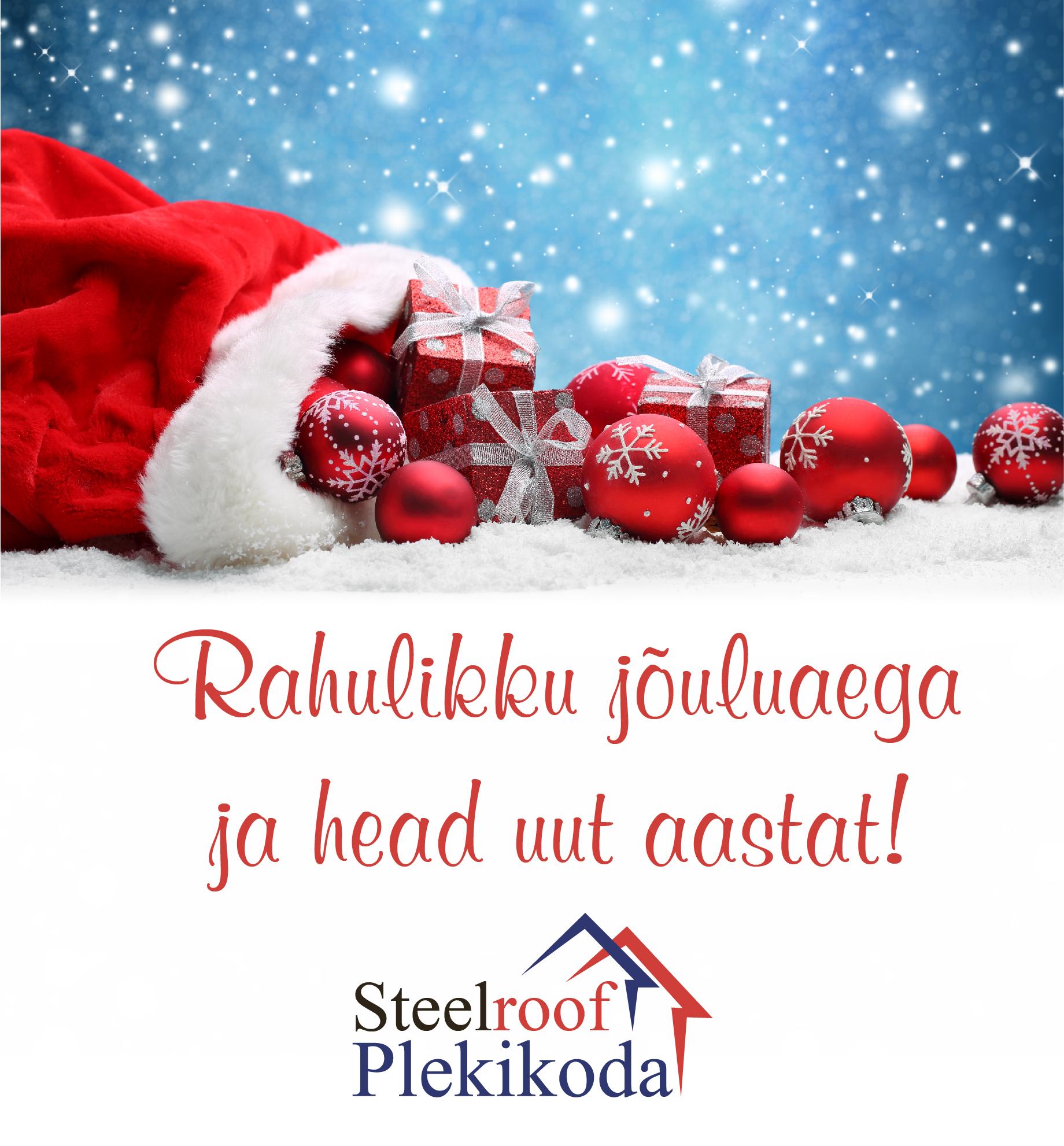 steelroof-05